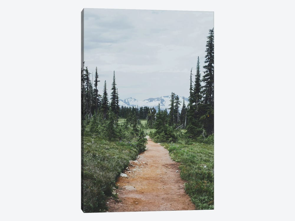 Garibaldi Provincial Park, Canada II by Luke Anthony Gram 1-piece Canvas Artwork