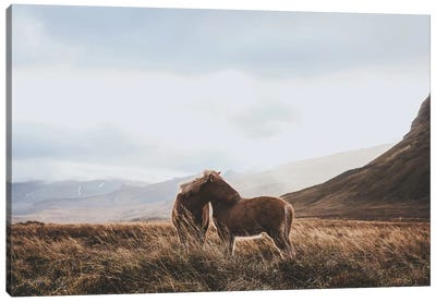 Iceland VII Canvas Art Print