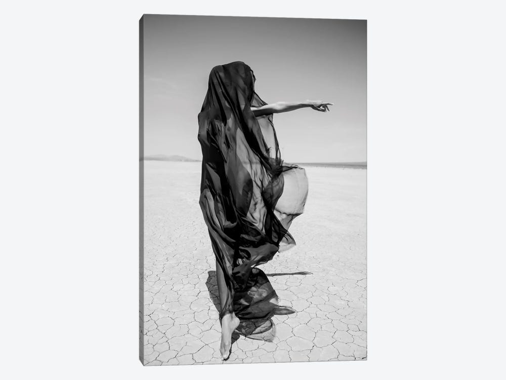 Desert Ghost by Gregory Prescott 1-piece Canvas Art Print