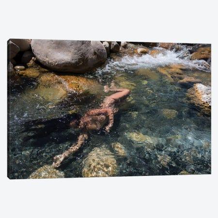 Flow Canvas Print #GRP9} by Gregory Prescott Canvas Art Print