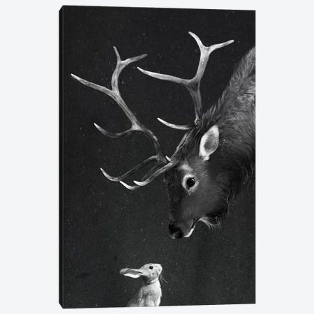 Elk & Rabbit Canvas Print #GRV12} by Laura Graves Canvas Wall Art
