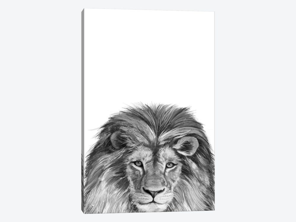 Lion by Laura Graves 1-piece Canvas Art