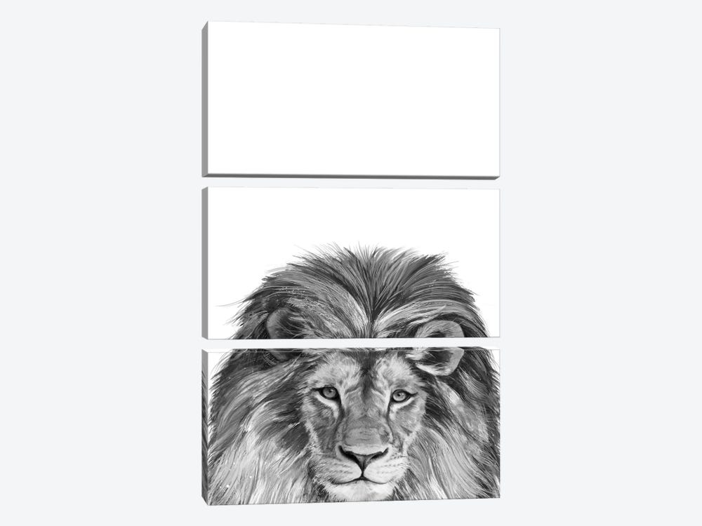 Lion by Laura Graves 3-piece Canvas Art