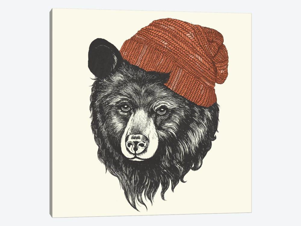 Zissou The Bear by Laura Graves 1-piece Canvas Art