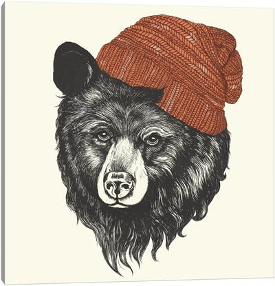 Zissou The Bear Canvas Art Print