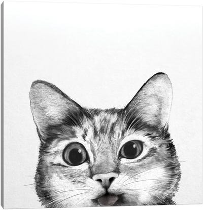Silly Cat Canvas Art Print