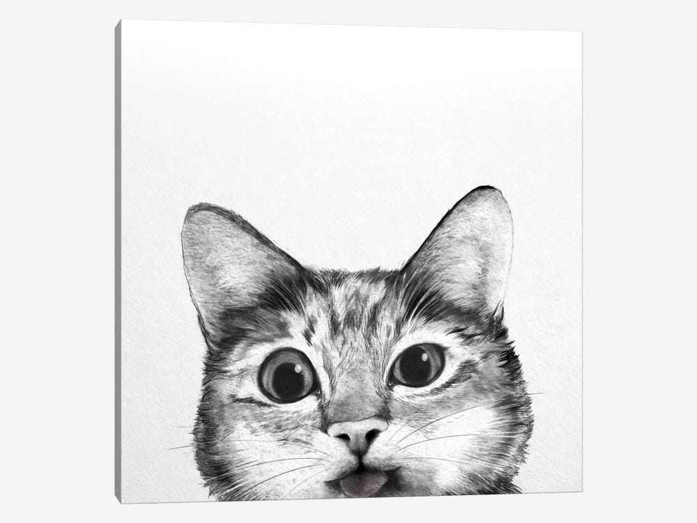 Silly Cat by Laura Graves 1-piece Canvas Art Print
