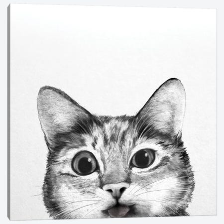 Silly Cat 3-Piece Canvas #GRV41} by Laura Graves Canvas Print