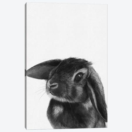 Bunny Canvas Print #GRV42} by Laura Graves Art Print