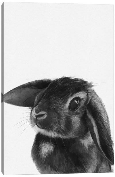 Bunny Canvas Art Print