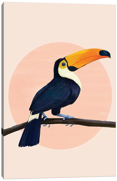 Tropical Toucan Canvas Art Print