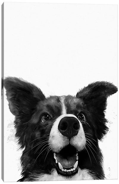 Who's A Good Boy Canvas Art Print