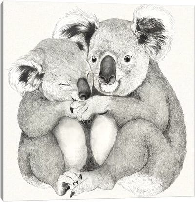 Koalas Canvas Art Print