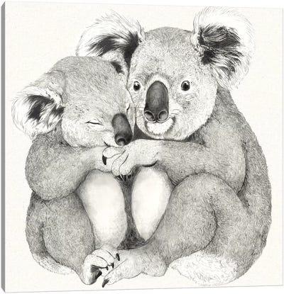 Koalas Canvas Art Print