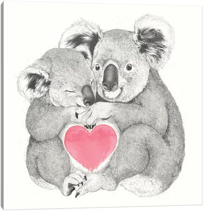 Koalas Love Hugs Canvas Art Print
