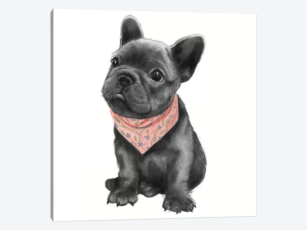 Parlez-Vous Frenchie by Laura Graves 1-piece Canvas Print