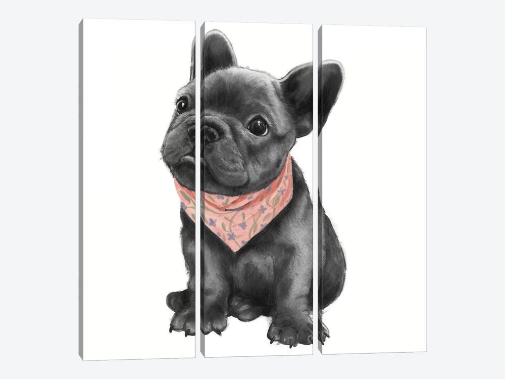 Parlez-Vous Frenchie by Laura Graves 3-piece Canvas Art Print