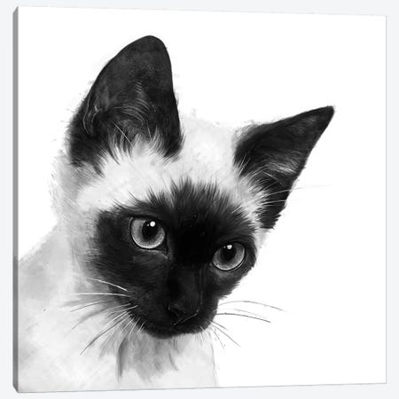 Siamese Canvas Print #GRV55} by Laura Graves Canvas Print