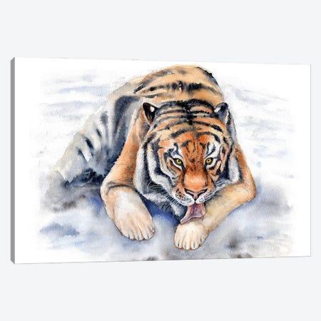 Amur Tiger Canvas Print #GSI2} by Goosi Canvas Wall Art
