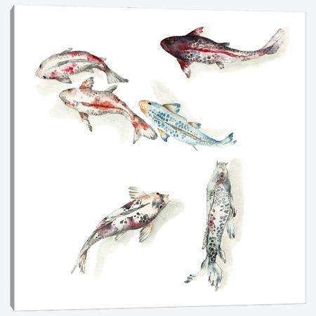 Koi Fish Swimming Canvas Print #GSI37} by Goosi Canvas Art Print