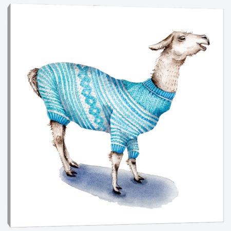 Llama In Blue Sweater Canvas Print #GSI38} by Goosi Canvas Artwork