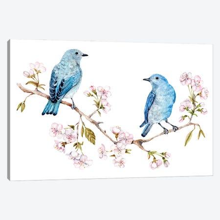 Mountain Bluebirds On Sakura Branch Canvas Print #GSI42} by Goosi Art Print