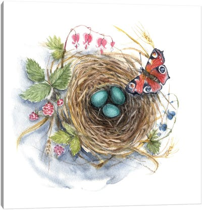 Robin's Nest - Botanical Print Canvas Art Print