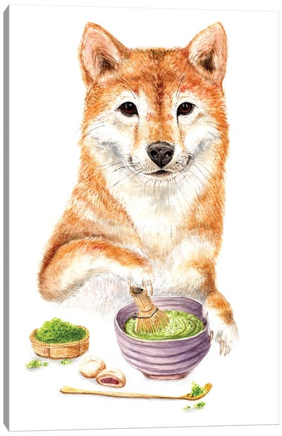Shiba Inu Making Matcha Tea Canvas Art Print