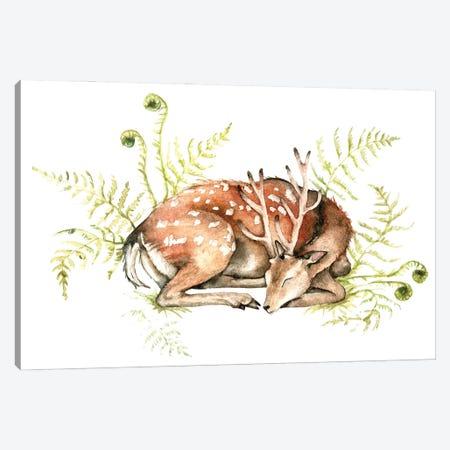 Sleeping Deer On Fern Canvas Print #GSI57} by Goosi Canvas Art Print