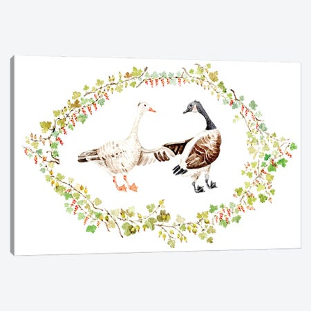 Two Geese In Gooseberry Vignette Canvas Print #GSI72} by Goosi Canvas Artwork
