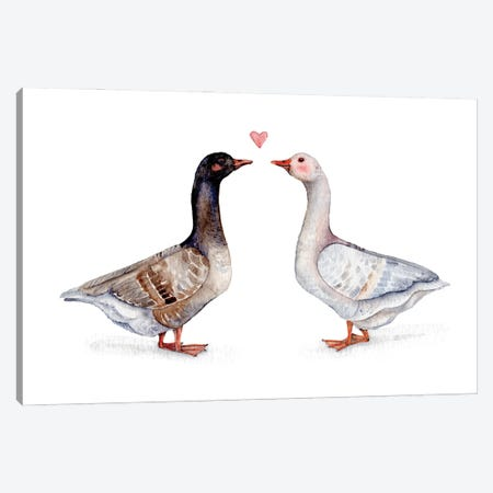 Geese Love Canvas Print #GSI73} by Goosi Canvas Artwork