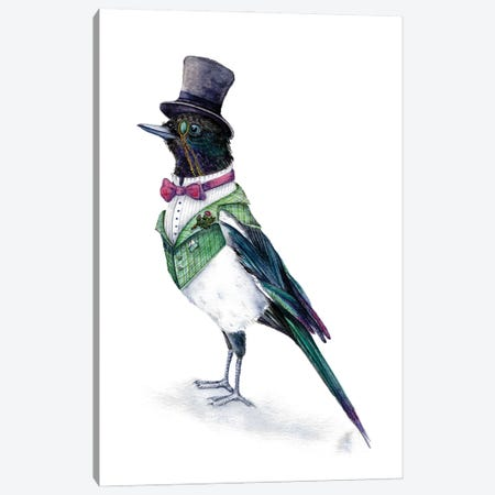 Victorian Magpie Bird Canvas Print #GSI76} by Goosi Art Print