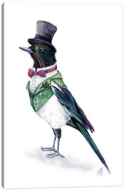 Victorian Magpie Bird Canvas Art Print