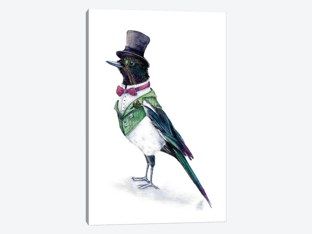 Victorian Magpie Bird by Goosi 1-piece Canvas Art