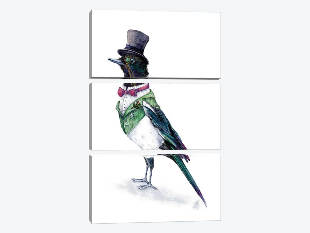 Victorian Magpie Bird by Goosi 3-piece Canvas Wall Art