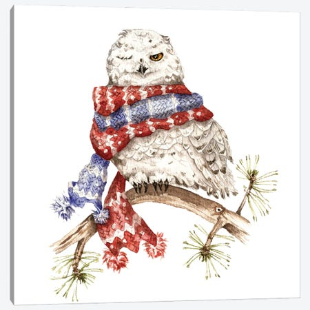 Winking Arctic Owl In A Scarf Canvas Print #GSI77} by Goosi Canvas Art Print