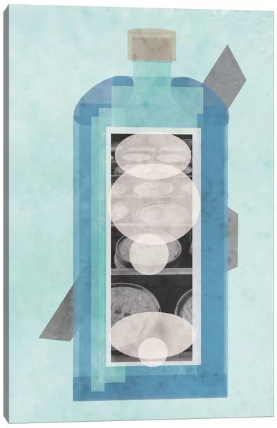 Bluebird Canvas Art Print