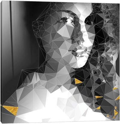 She Is Looking Through The Glass Canvas Art Print