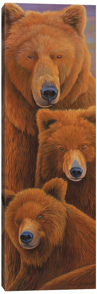Alaska Coming I Canvas Art Print