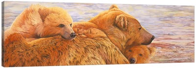 Alaska Coming III Canvas Art Print