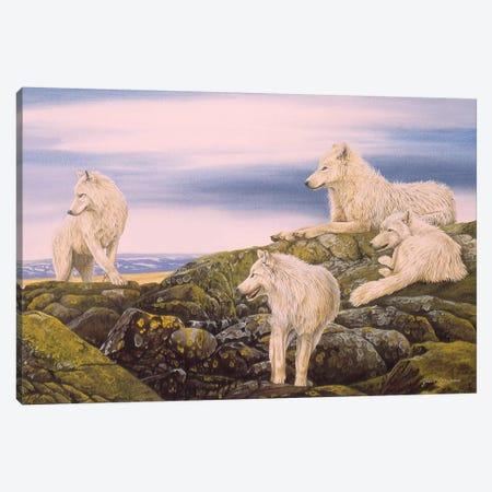 Arctic Wolves Canvas Print #GST112} by Graeme Stevenson Canvas Art Print