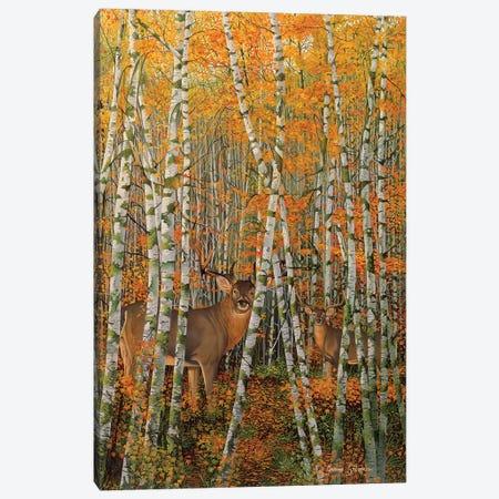 Autumn Stags Canvas Print #GST117} by Graeme Stevenson Canvas Art