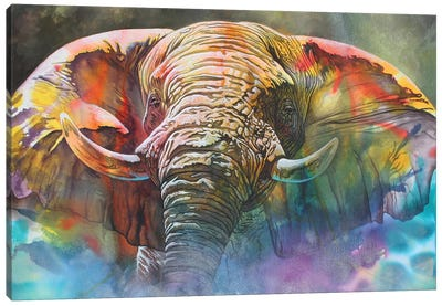 Back Off Large Canvas Art Print
