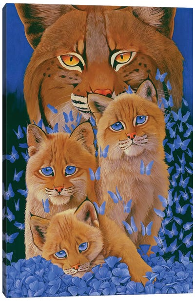 Bobcat Kittens Canvas Art Print