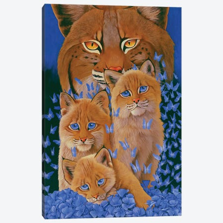 Bobcat Kittens 3-Piece Canvas #GST133} by Graeme Stevenson Art Print
