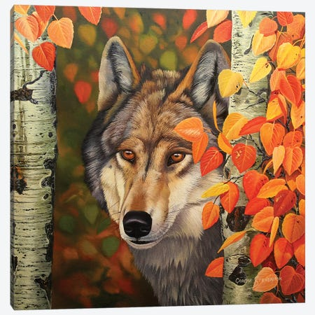 Colours Of The Wolf Canvas Print #GST144} by Graeme Stevenson Canvas Art Print