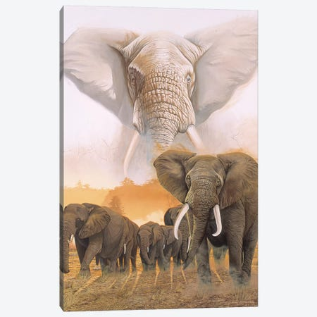 Confrontation Canvas Print #GST145} by Graeme Stevenson Canvas Art Print