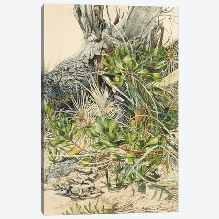 Down At The Beach Canvas Print #GST158} by Graeme Stevenson Art Print