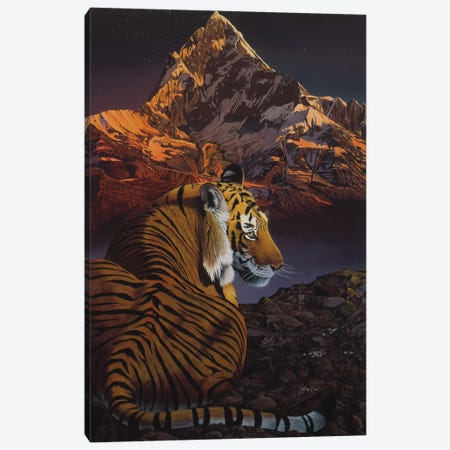 Cosmic Tiger Canvas Print #GST15} by Graeme Stevenson Canvas Artwork