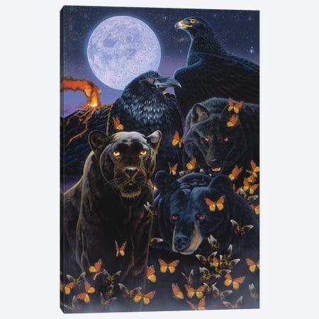 Ebony 3-Piece Canvas #GST162} by Graeme Stevenson Canvas Art